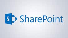Microsoft SharePoint support